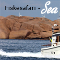 Fiskesafari / Båttaxi